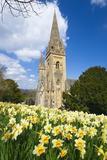 Billy Stock - Llandaff Cathedral, Llandaff, Cardiff, Wales, United Kingdom, Europe - Fotografik Baskı