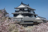 Cherry Blossom and the Matsuyama Castle, Shikoku, Japan, Asia Photographic Print by Michael Runkel