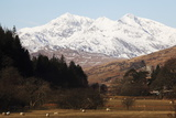Mount Snowdon Capped with Snow as Welsh Sheep Graze on a Sunny Spring Day, Snowdonia National Park Fotoprint van Stuart Forster