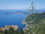 St Jean Cap Ferrat, Cote D'Azur, France Fotografisk tryk af Roy Rainford