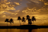 Sunset over the Backwaters, Alleppey, Kerala, India, Asia Photographic Print by Balan Madhavan