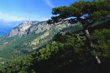 Cazorla National Park, Sierra Del Pozo, Andalucia, Spain Photographic Print by Duncan Maxwell