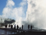 Castle Geyser, Upper Geyser Basin, Yellowstone National Park, Wyoming, Usa Photographic Print by Roy Rainford