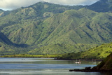 Island of Pulau Komodo, Nusa Tenggara, Indonesia, Southeast Asia, Asia Photographic Print by Tony Waltham