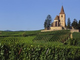Church and Vineyards, Hunawihr, Alsace, France Photographic Print by John Miller