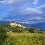 Assisi, Umbria, Italy Photographic Print by Tony Gervis