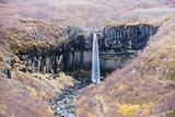Svartifoss Waterfall, Skaftafell National Park, Iceland, Polar Regions Photographic Print by Christian Kober
