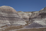 Petrified Forest National Park Photographic Print by Richard Maschmeyer