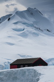 Port Lockroy Research Station, Antarctica, Polar Regions Photographic Print by Michael Runkel
