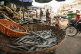 Market, Battambang, Battambang Province, Cambodia, Indochina, Southeast Asia, Asia Photographic Print by Ben Pipe