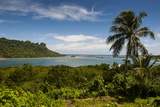 Lonely Palm Tree, Pohnpei (Ponape), Federated States of Micronesia Photographic Print by Michael Runkel