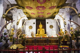 Golden Buddha Statue at Temple of the Sacred Tooth Relic (Sri Dalada Maligawa) Photographic Print by Matthew Williams-Ellis