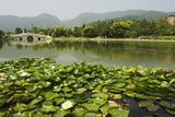 Lily Pads and a Arched Stone Bridge in Beijing Botanical Gardens, Beijing, China, Asia Photographic Print by Christian Kober