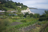Allotments on the Coast at Beer, Devon, England, United Kingdom, Europe Photographic Print by Rob Cousins