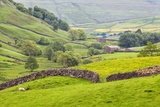 Dry Stone Wall and Field Barns Below Kisdon Hill in Swaledale Photographic Print by Mark Sunderland