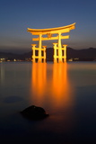 The Famous Vermillion Coloured Floating Torii Gate Photographic Print by Gavin Hellier
