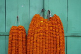 Door, Padlock and Flower Garlands, Kolkata (Calcutta), West Bengal, India, Asia Photographic Print by Bruno Morandi