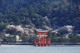 Floating Torii Gate, Itsukushima Jinja Shrine, Miyajima Island Photographic Print by Christian Kober