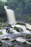 Thornton Force, Ingleton Waterfalls Walk, Yorkshire Dales National Park Photographic Print by Markus Lange