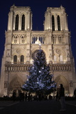 Christmas Tree, Notre-Dame De Paris Cathedral, Paris, France, Europe Photographic Print by  Godong