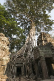 Taprohm Kei Temple, Angkor Thom, Siem Reap, Cambodia Photographic Print by Robert Harding