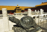 Turtle Statue, Zijin Cheng, the Forbidden City Palace Museum Photographic Print by Christian Kober