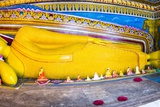 Golden Reclining Buddha at Temple of the Tooth (Temple of the Sacred Tooth Relic) in Kandy Photographic Print by Matthew Williams-Ellis