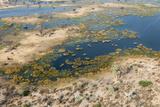 Aerial View of Okavango Delta, Botswana, Africa Photographic Print by Sergio Pitamitz
