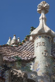 Roof Detail of Casa Batllo Photographic Print by James Emmerson