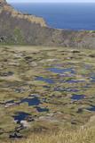Lake in Crater, Orongo, Easter Island, Chile, South America Reproduction photographique par Jean-Pierre De Mann