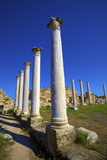 Colonnades of the Gymnasium, Salamis, North Cyprus, Cyprus, Europe Photographic Print by Neil Farrin