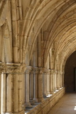 The Cloister, the Cistercian Abbey of Noirlac, Bruere-Allichamps, Cher, Centre, France, Europe Photographic Print by  Godong