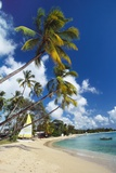 Mullins Beach, St Peters Parish, Barbados, Caribbean Photographic Print by Robert Francis