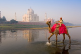 Boy Riding Camel in the Yamuna River in Front of the Taj Mahal Reproduction photographique par Gavin Hellier