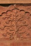 Mughal Architecture, Delhi, India, Asia Photographic Print by Balan Madhavan