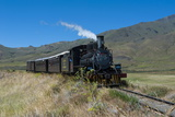 La Trochita, the Old Patagonian Express Between Esquel and El Maiten in Chubut Province, Patagonia Photographic Print by Michael Runkel