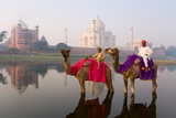 Man and Boy Riding Camels in the Yamuna River in Front of the Taj Mahal Photographie par Gavin Hellier