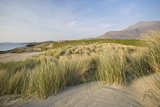 Glassillaun, Connemara, County Galway, Connacht, Republic of Ireland, Europe Photographic Print by Ben Pipe
