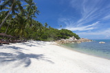 Private Secluded Beach Fringed by Palm Trees at the Silavadee Pool Spa Resort Near Lamai Fotografisk tryk af Lee Frost