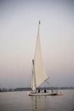 Felucca, River Nile, Egypt, North Africa, Africa Photographic Print by Philip Craven