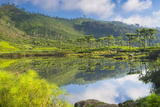 Lake at Haputale, Nuwara Eliya District, Sri Lanka Hill Country, Sri Lanka, Asia Photographic Print by Matthew Williams-Ellis