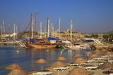 Beach, Boats and Castle, Bodrum, Anatolia, Turkey, Asia Minor, Eurasia Photographic Print by Neil Farrin