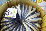 Sardines in Mercado Central (Central Market), Valencia, Spain, Europe Photographic Print by Neil Farrin