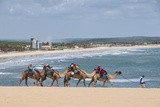 Camel Riding in the Famous Sand Dunes of Natal, Rio Grande Do Norte, Brazil, South America Photographic Print by Michael Runkel