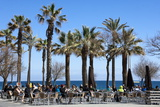 Pavement Cafe and Coffee Bar under Palm Trees Photographic Print by James Emmerson