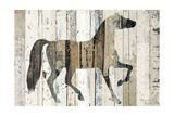 Dark Horse Premium Giclee Print by Michael Mullan