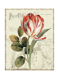 Garden View II Giclee-tryk i høj kvalitet af Lisa Audit