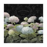 La Belle Jardiniere Premium Giclee Print by Danhui Nai