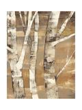 Wandering Through the Birches II Premium Giclee Print by Albena Hristova