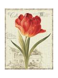 Garden View III Giclee-tryk i høj kvalitet af Lisa Audit